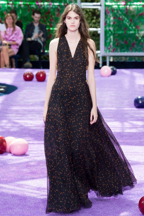 Christian Dior Fall 2015 Couture Printed Gown
